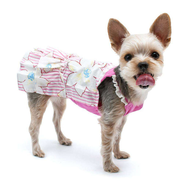 Summer Floral Dog Dress, Pet Clothes, Furbabeez, [tag]