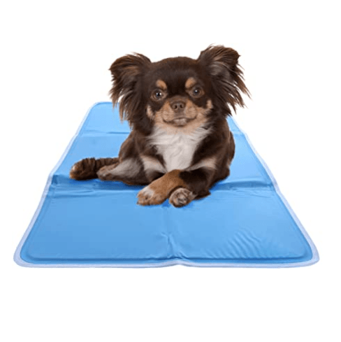 The Hugs Chillz Gel Mat Pet Bed Green Pet Shop