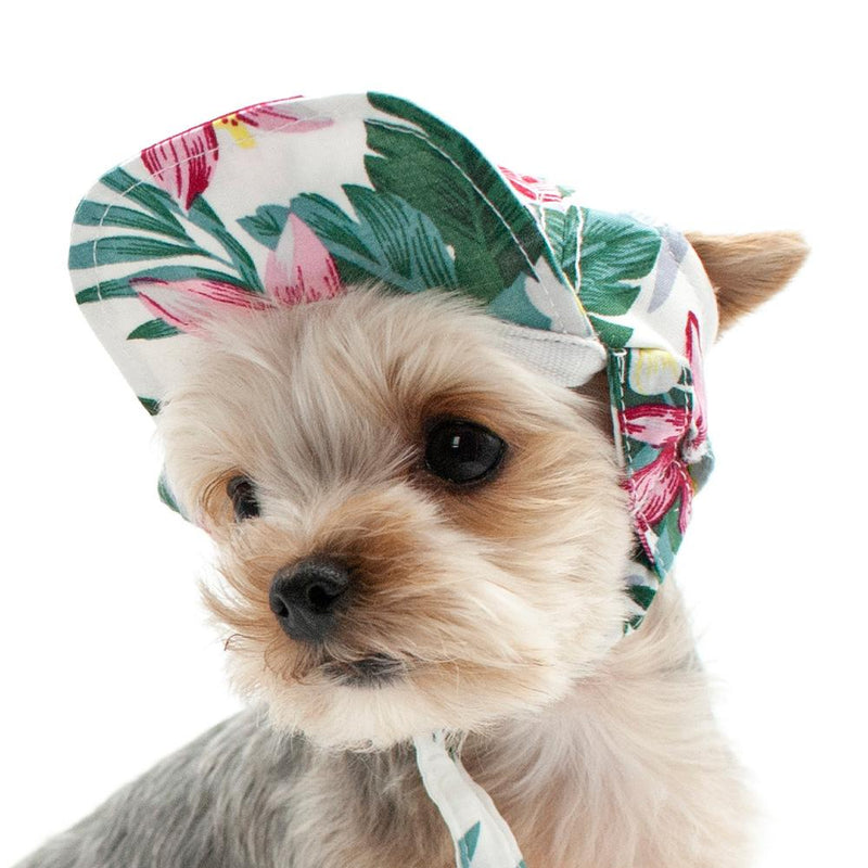 Tropical Island Dog Hat, Pet Accessories, Furbabeez, [tag]