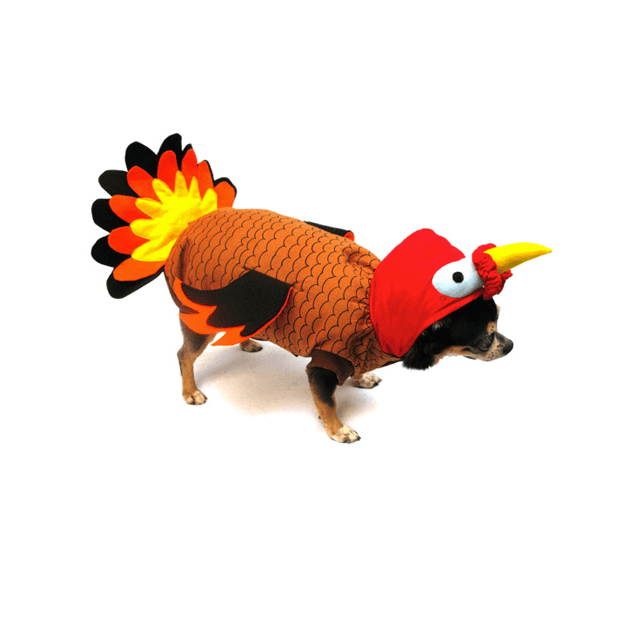 Turkey Dog Costume Pet Clothes Puppe Love