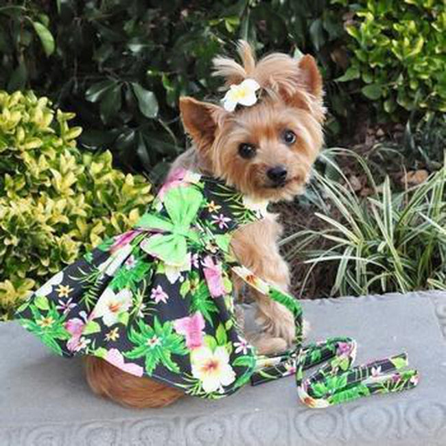 Twilight Black Hawaiian Hibiscus Dog Dress with Matching Leash, Pet Clothes, Furbabeez, [tag]