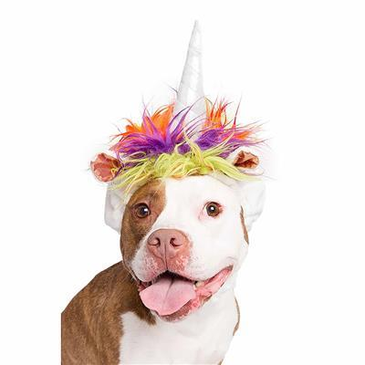 Unicorn Dog Hat Costume Pet Accessories Pet Krewe