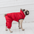 Whistler Dog Snowsuit - Candy Red