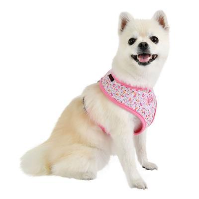 Wildflower Harness Collars and Leads Puppia