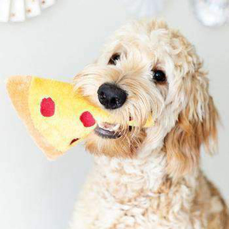 Knit Knacks Pizza Organic Cotton Small Dog Toy, Pet Toys, Furbabeez, [tag]