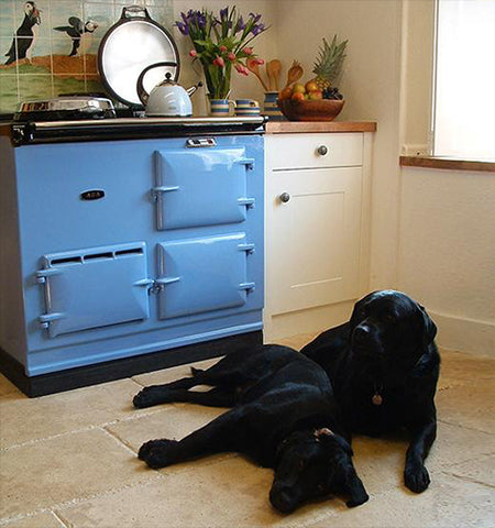 Aga and dogs