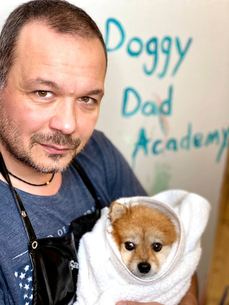The Doggy Dad Academy