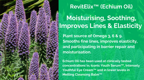 Echium Oil Revitalix MERUMAYA Ingredients