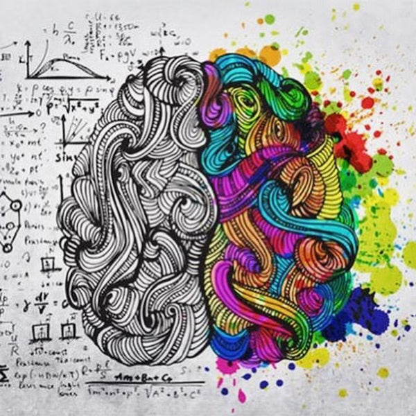 Creativity Different Sides of the Brain