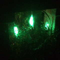 Miniature lanterns lit in green to resemble the cocoon of the Purple Emperor butterfly