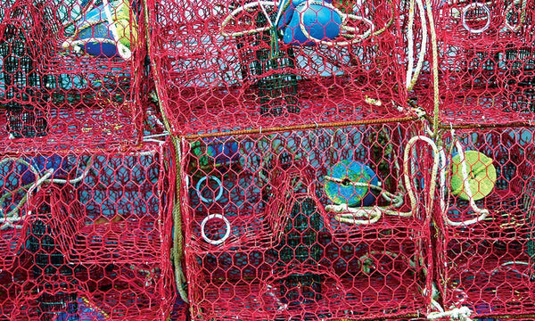 "Crab and Crawfish Mesh -  (GBW) - 17.5 Gauge - Red - 1.5"" Mesh - 24""x150'"