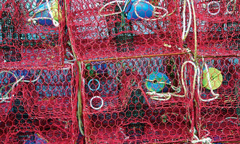 "Crab and Crawfish Mesh - 14/15 Gauge - Red Bonded- 1.5"" Mesh - 24""x150'"