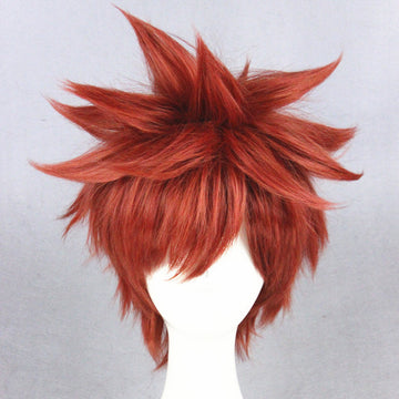 Cosplay Wig - Fate stay night - Shirou Emiya-UNIQSO