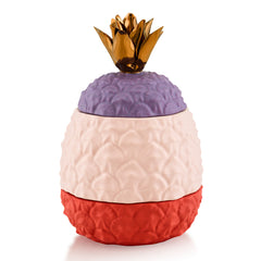 Ceramic pineapple jar - multi color