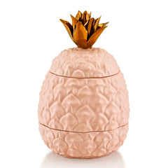 Ceramic pineapple jar - pink