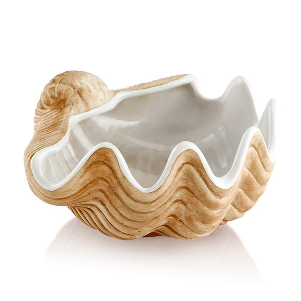 ceramic porcelain shell in brown natural color
