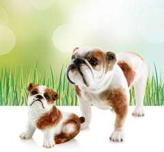 Ceramic sitting bulldog statues