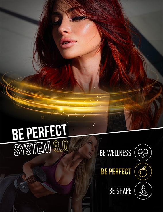 New Be Perfect System 3.0