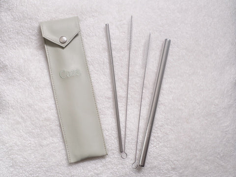 eco-friendly stainless straw by FunNest