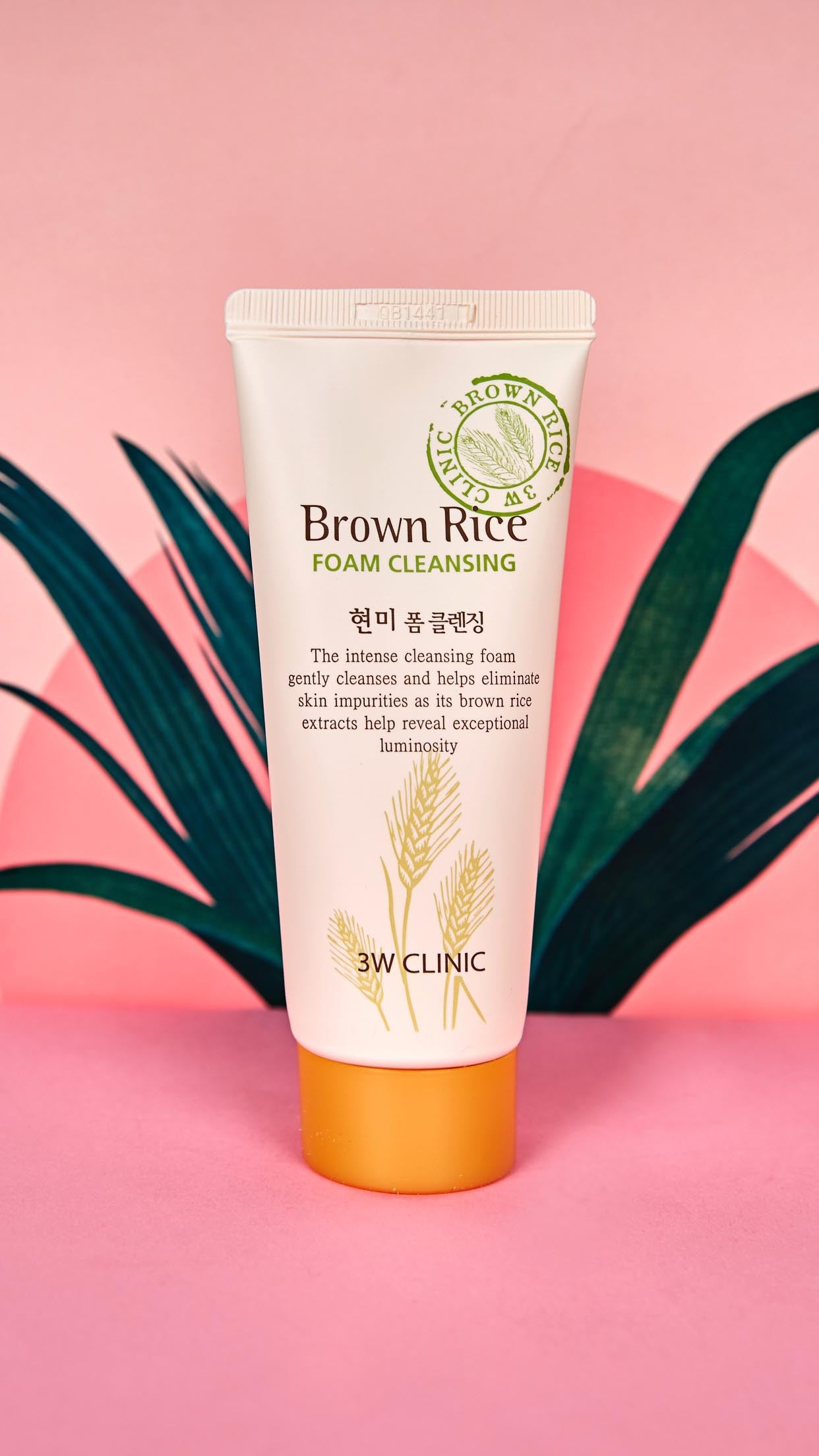 Brown Rice Foam Cleanser