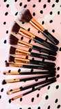 Like A Diamond 10-Piece Brush Set
