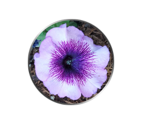 Purple Petunia Flower Ball Marker