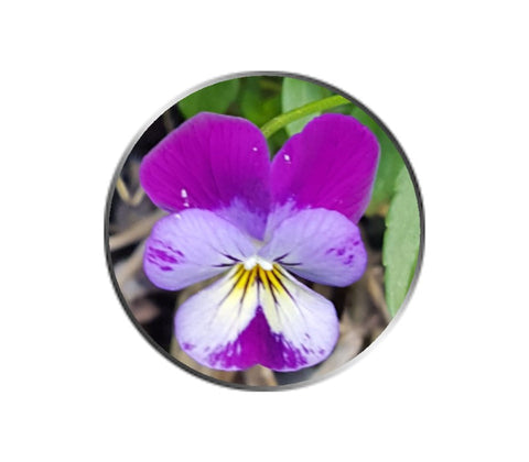 Purple and White Pansy Flower Ball Marker