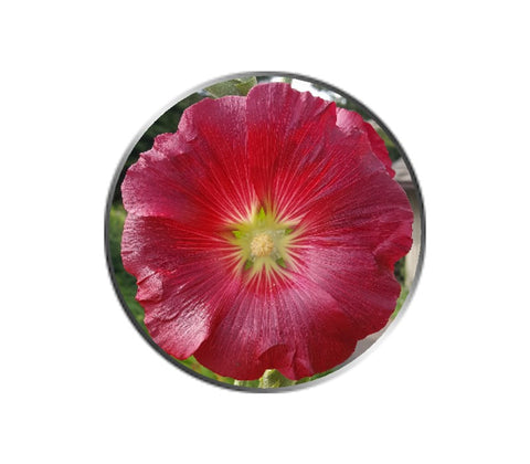 Red Petunia Flower Ball Marker