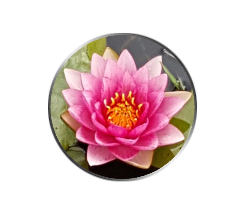 Pink Water Lily Flower Ball Marker