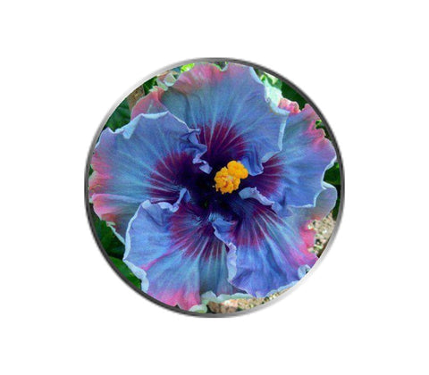 Purple Primrose Flower Ball Marker