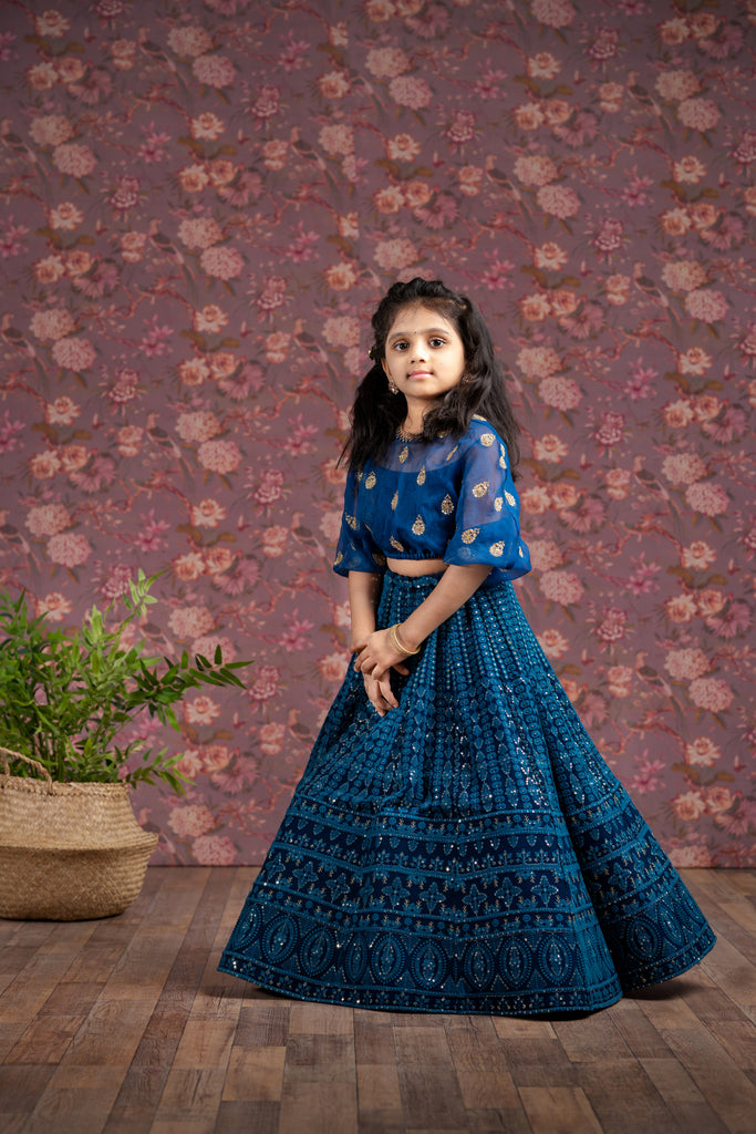 Blue chikanakri Lehenga for 1-10 Year's old