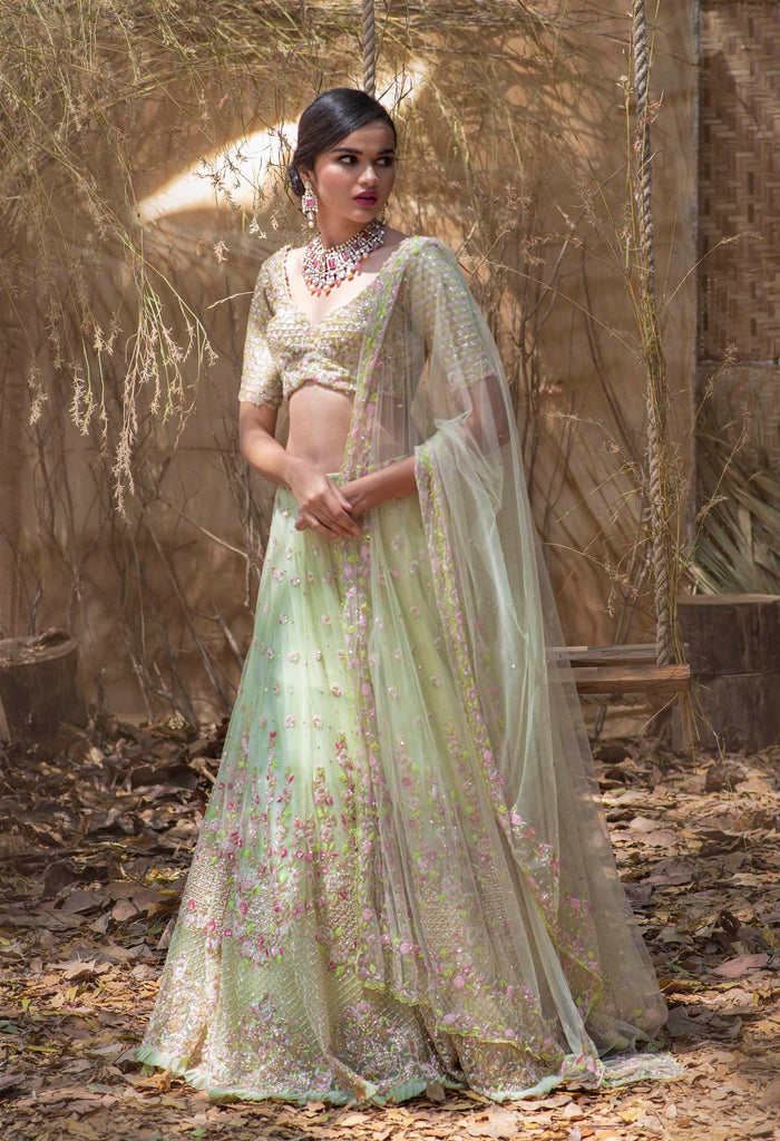 Mint Green  net multicolor crystal lehenga.