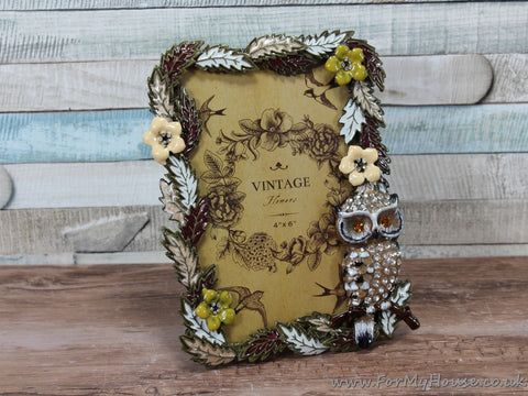 "4X6"" Crystal Owl Detail Photo Frame"