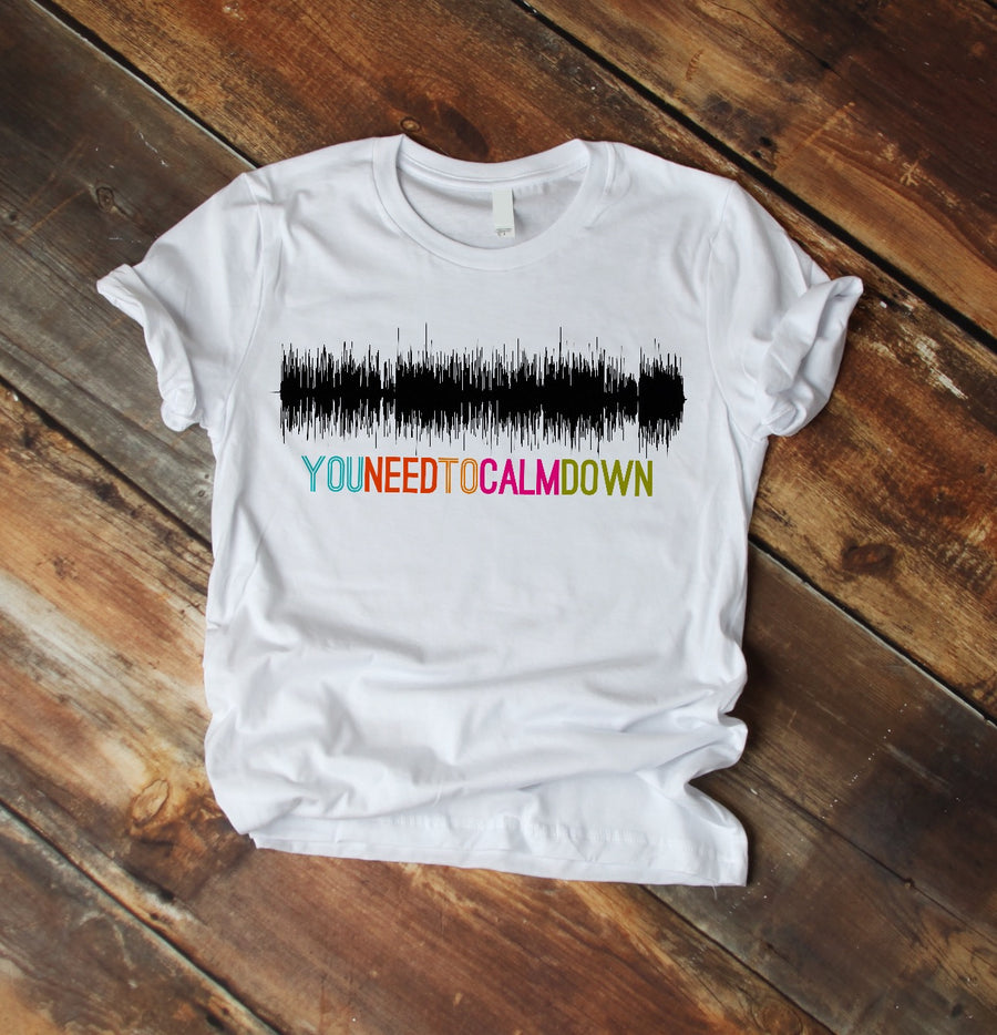 You Need to Calm Down Soundwave T-Shirt | Sound Wave Shirt