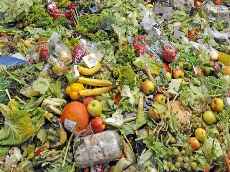 Food waste and what we can do about it
