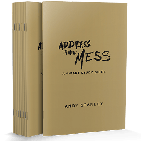 Address the Mess Study Guide 10-Pack