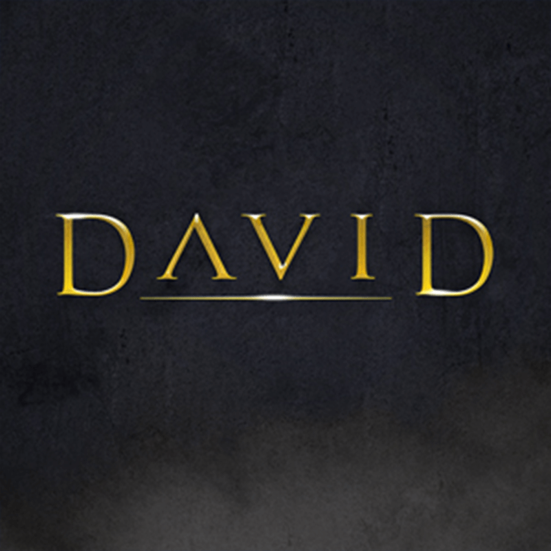 David Audio Download