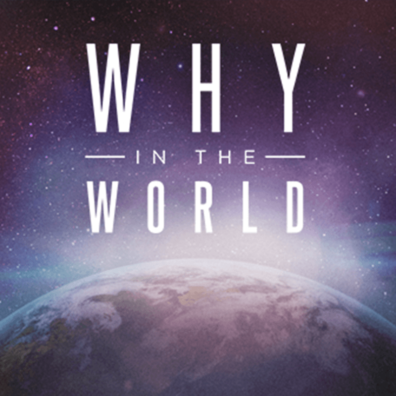 Why In the World Audio Download