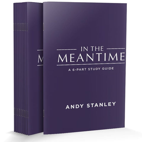 In the Meantime Study Guide (REVISED) 10-Pack