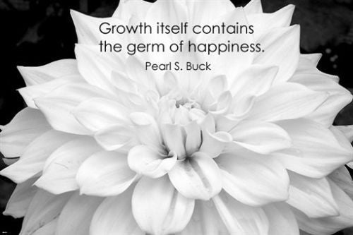zinnia flower with PEARL S. BUCK quote INSPIRATIONAL POSTER 24X36 happiness