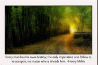 DESTINY path MOTIVATIONAL poster 24X36 FALL colors FOREST inspiration