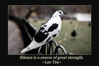 B&W Pigeon LAO TZU INSPIRATIONAL POSTER Simple Quote 24X36 POETIC GRACEFUL