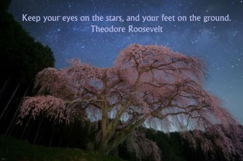 Theodore Roosevelt quote about stars INSPIRATIONAL poster 24X36 POSITIVITY