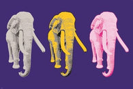 PASTEL ELEPHANTS pop art poster COLORFUL SYMBOLIC one-of-a-kind animal 24X36