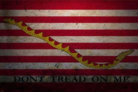DON'T TREAD ON ME flag with snake poster 24X36 grunge style GREAT GRAPHICS