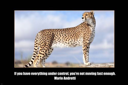 MARIO ANDRETTI self empowerment quote MOTIVATIONAL POSTER 24X36 cheetah
