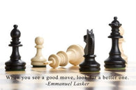 Chess Moves MOTIVATIONAL POSTER 24X36 POWER intelligence STRATEGY Finesse