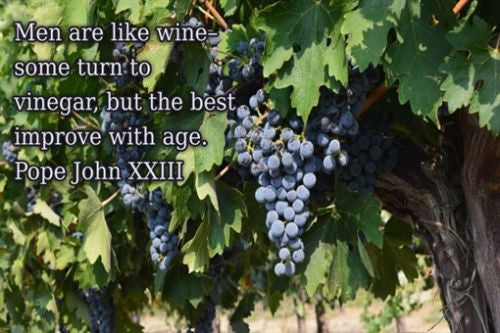 POPE JOHN 23 quote about men & wine INSPIRATIONAL POSTER 24X36 wise insight