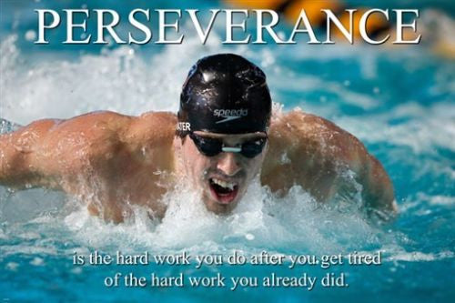 PERSEVERANCE motivation POSTER 24X36 TENACITY determination WISE WORDS
