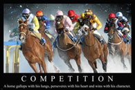 Horse Racing St Moritz Switzerland MOTIVATIONAL POSTER 24X36 COMPETITION